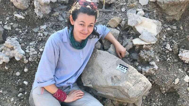 Surpresa com descoberta de fóssil feita na Tanzânia